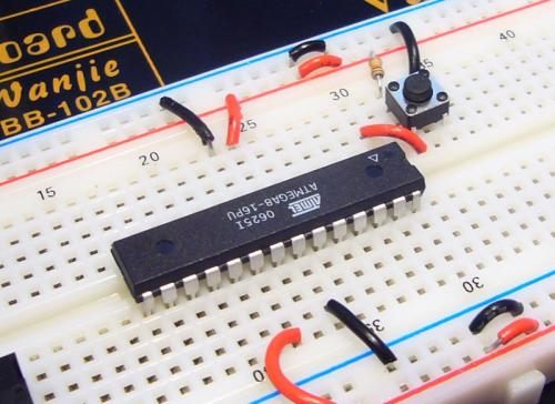 A microcontroller mounted on a bread board