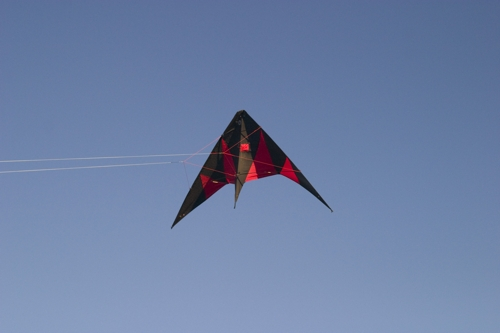 http://www.sparkfun.com/tutorial/LilyFlyer/Pics/flying-2-s.jpg