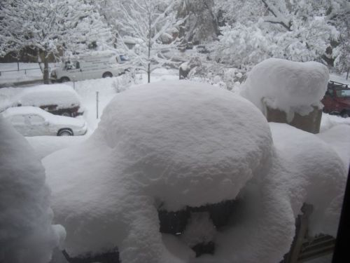 http://www.sparkfun.com/tutorial/news/Snow09-M.jpg